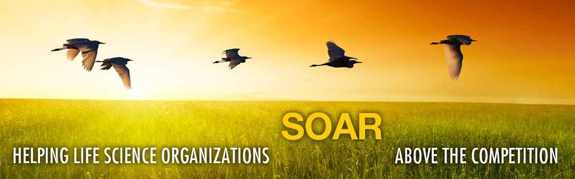 Helping Life Science Organizations Soar Above the Competition